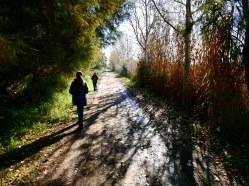 Camino de Cal Tet